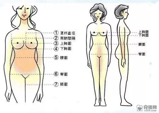 女装标准尺码对照表,连衣裙,裤子,鞋子尺码对照表.jpg
